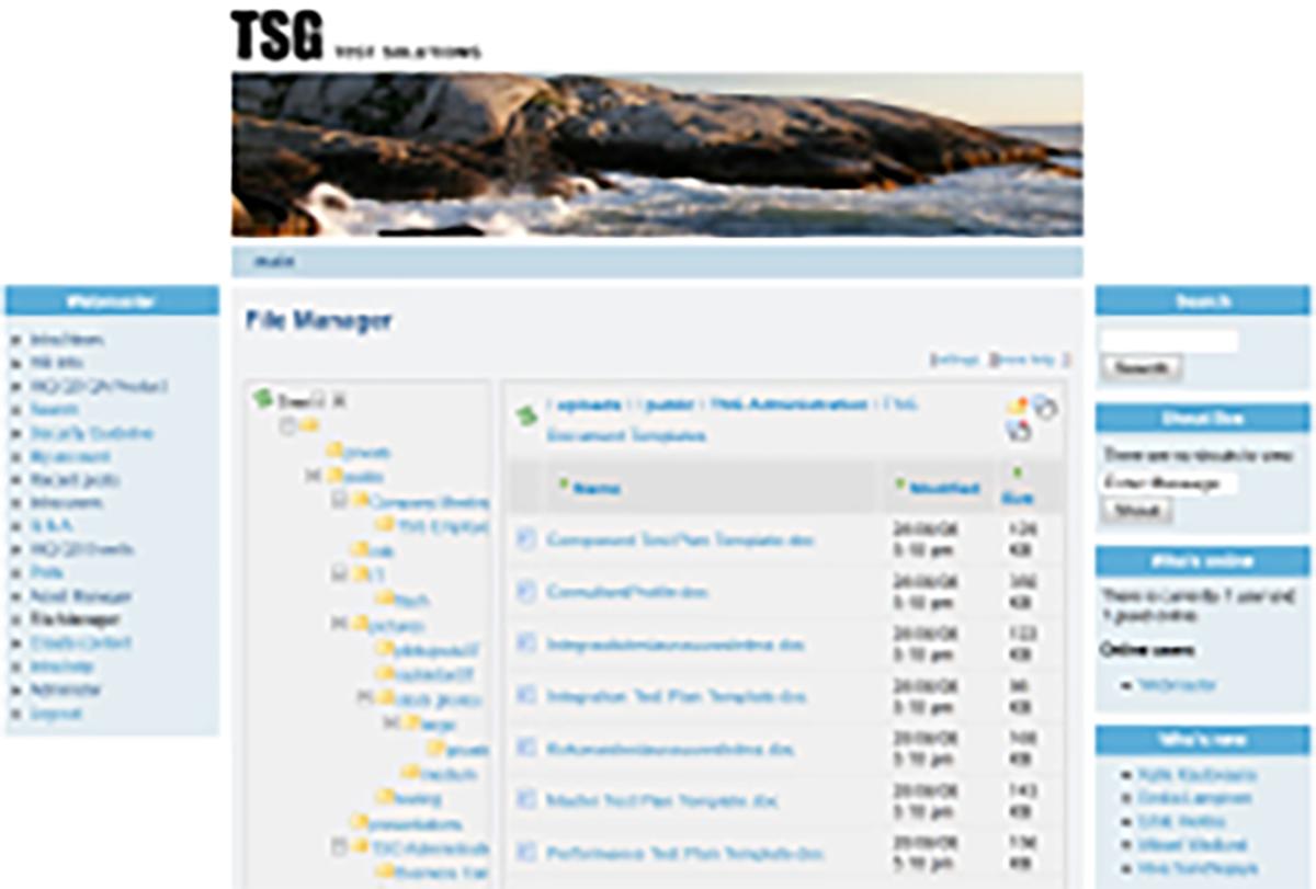 tsg testsolutions nettisivut kuvakaappaus